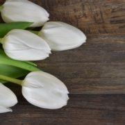 stuhrs flowers